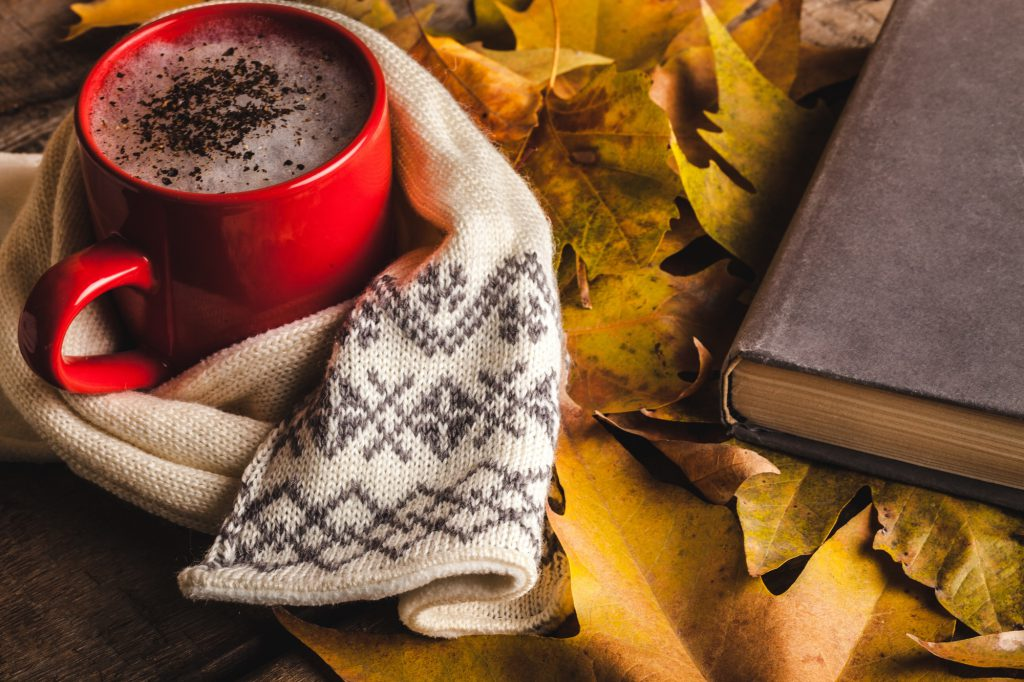 Fall COzy Mystery Books